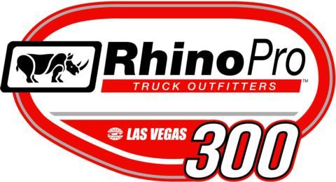 Rhino Pro 300
